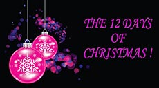The 12 Twelve Days of Christmas - Song Video
